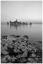 Tufa towers at dusk, South Tufa area. Mono Lake, California, USA ( black and white)