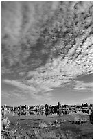 Clouds and Tufa towers, morning. Mono Lake, California, USA ( black and white)