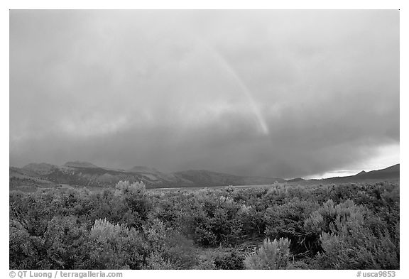 Rainbow and storm over Mono Basin, evening. Mono Lake, California, USA (black and white)