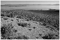 Lake seen from Mono crater. Mono Lake, California, USA ( black and white)