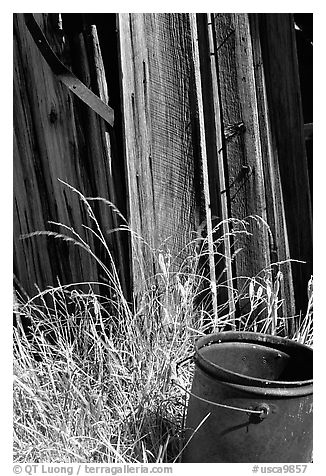 Bucket, grasses, and wall, Ghost Town, Bodie State Park. California, USA (black and white)
