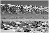Sierra Nevada mountains rising abruptly above Owens Valley. California, USA ( black and white)