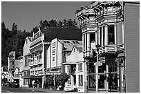 Row of Victorian Houses, Ferndale. California, USA (black and white)