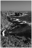 Cliffs and surf near Fort Bragg. California, USA (black and white)