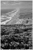 Point Reyes Beach, afternoon. Point Reyes National Seashore, California, USA ( black and white)