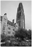 Harkness Tower. Yale University, New Haven, Connecticut, USA (black and white)