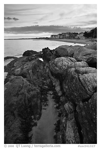 Algae-covered rocks and beach houses, Westbrook. Connecticut, USA (black and white)