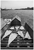 Fish being dried next to Mystic River. Mystic, Connecticut, USA ( black and white)