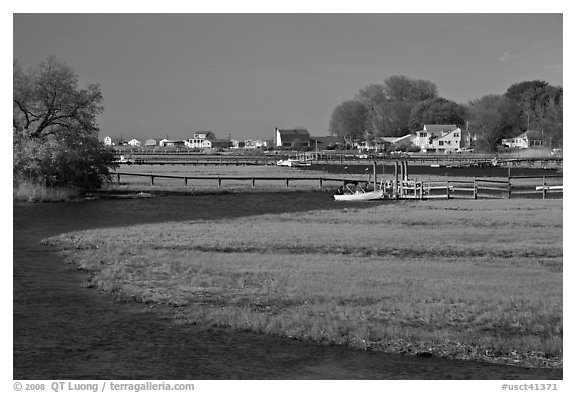 Oyster River, grasses, and houses, Old Saybrook. Connecticut, USA (black and white)