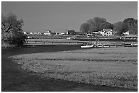 Oyster River, grasses, and houses, Old Saybrook. Connecticut, USA ( black and white)