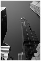 Upwards views of Sears tower and  skyscrappers. Chicago, Illinois, USA (black and white)