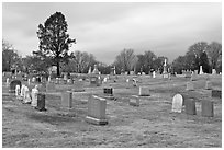 Lawn cemetery. Salem, Massachussets, USA (black and white)