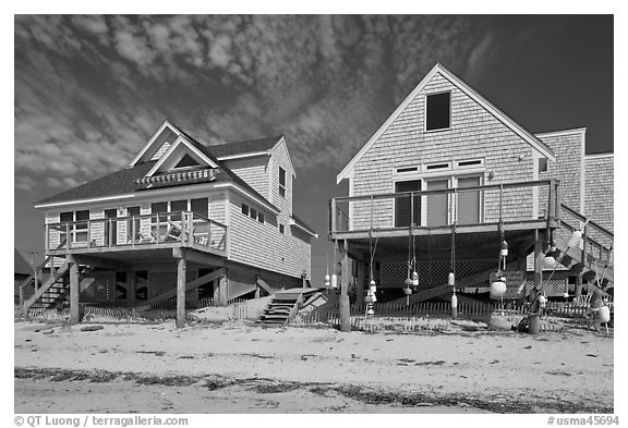 Beach houses, Truro. Cape Cod, Massachussets, USA (black and white)