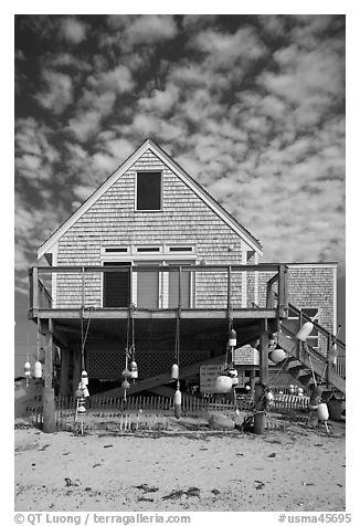 Black And White Picture Photo Beach House Truro Cape