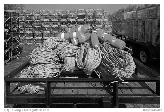 Lobstering gear, Truro. Cape Cod, Massachussets, USA (black and white)
