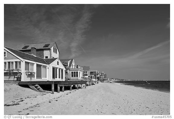 Beach, Provincetown. Cape Cod, Massachussets, USA (black and white)