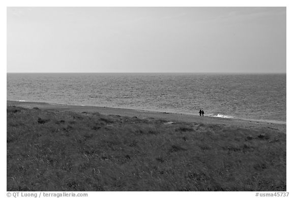 Distant couple on beach, Cape Cod National Seashore. Cape Cod, Massachussets, USA (black and white)