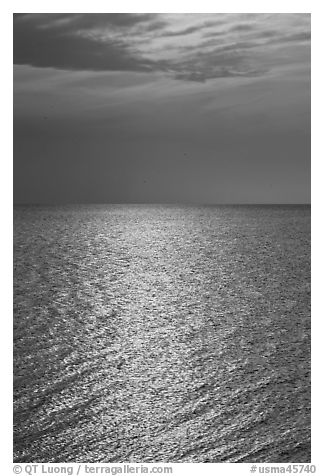 Shimmering water, Cape Cod Bay, Cape Cod National Seashore. Cape Cod, Massachussets, USA (black and white)