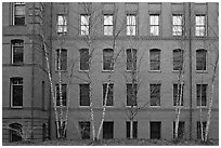 Facade of brick building, Harvard University, Cambridge. Boston, Massachussets, USA (black and white)