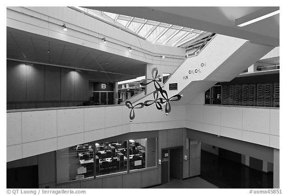 Inside science building, Harvard University, Cambridge. Boston, Massachussets, USA (black and white)