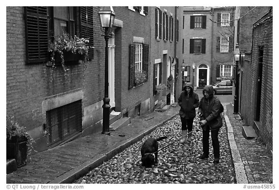 Women walking dog on rainy day, Beacon Hill. Boston, Massachussets, USA (black and white)