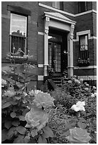 Flowers and brick houses on Beacon Hill. Boston, Massachussets, USA (black and white)
