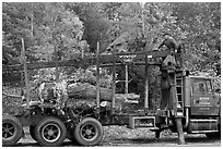Tree pruning truck, Rockwood. Maine, USA ( black and white)