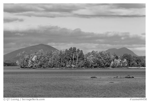 Deer Island on Moosehead Lake, afternoon. Maine, USA (black and white)