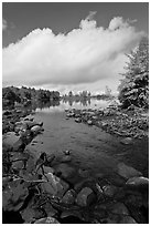 Stream, trees in autumn foliage, Beaver Cove. Maine, USA ( black and white)