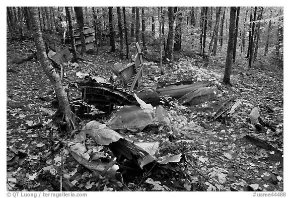 B-52 wreck scattered in autum forest. Maine, USA (black and white)