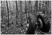 Landing gear of crashed B-52 in woods. Maine, USA (black and white)