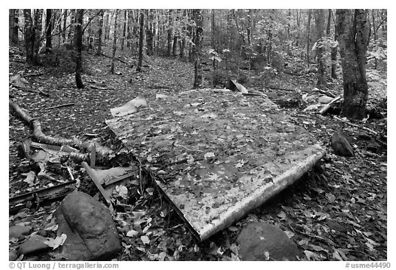 Pieces of B-52 wreckage lie scattered on Elephant Mountain. Maine, USA (black and white)