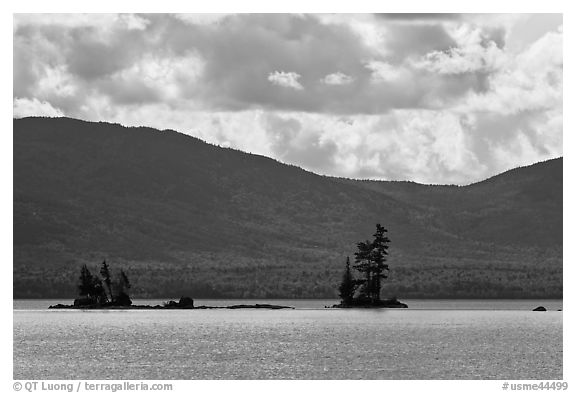 Islets with conifers, Moosehead Lake, Lily Bay State Park. Maine, USA (black and white)
