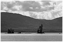 Islets with conifers, Moosehead Lake, Lily Bay State Park. Maine, USA ( black and white)
