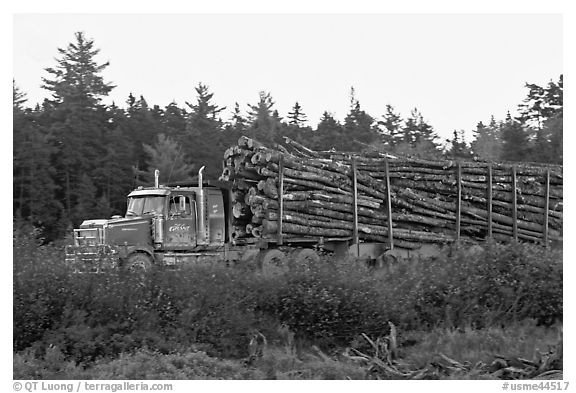 Truck loaded with tree logs. Maine, USA (black and white)