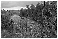 Penobscot River in the fall. Maine, USA (black and white)