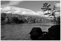 Penobscot River, boulders, and trees in fall. Maine, USA ( black and white)