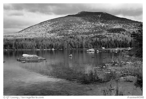 South Turner Mountain reflected in Sandy Stream Pond in autumn. Baxter State Park, Maine, USA (black and white)