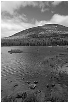 Forested mountain with fall foliage and pond. Baxter State Park, Maine, USA ( black and white)