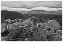 Evergreens and boulders on summit of South Turner Mountain. Baxter State Park, Maine, USA ( black and white)