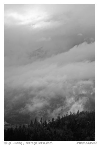 Clearing clouds and ridge with conifers. Baxter State Park, Maine, USA (black and white)