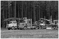 Forestry vehicles in a clearing. Maine, USA ( black and white)