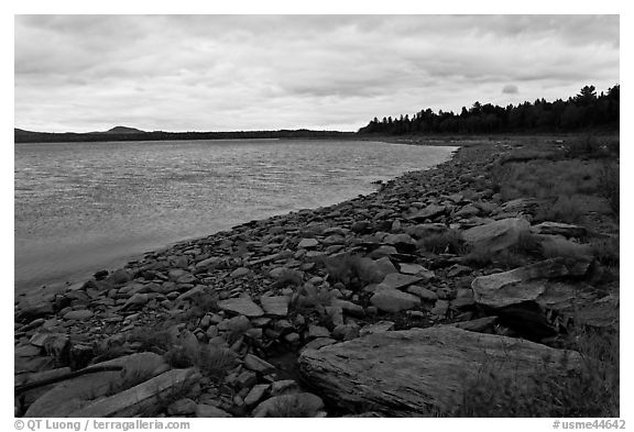 Shores of Eagle Lake. Allagash Wilderness Waterway, Maine, USA (black and white)