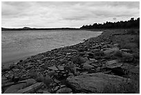 Shores of Eagle Lake. Allagash Wilderness Waterway, Maine, USA ( black and white)
