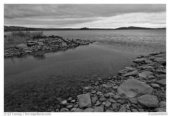Eagle Lake channel with tea-brown waters near Tramway site. Allagash Wilderness Waterway, Maine, USA (black and white)
