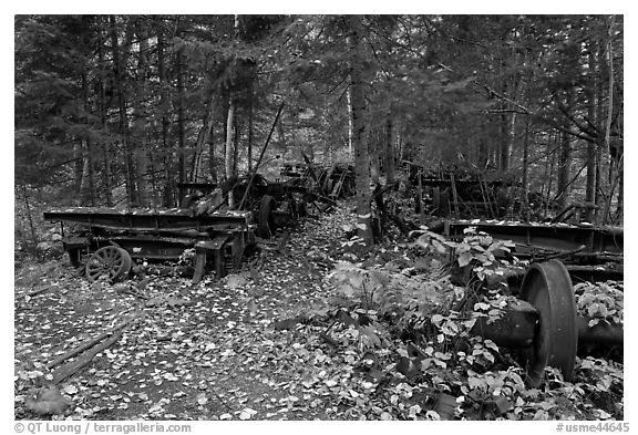 Remnants of abandonned railway equipement. Allagash Wilderness Waterway, Maine, USA (black and white)
