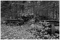 Remnants of abandonned railway equipement. Allagash Wilderness Waterway, Maine, USA ( black and white)
