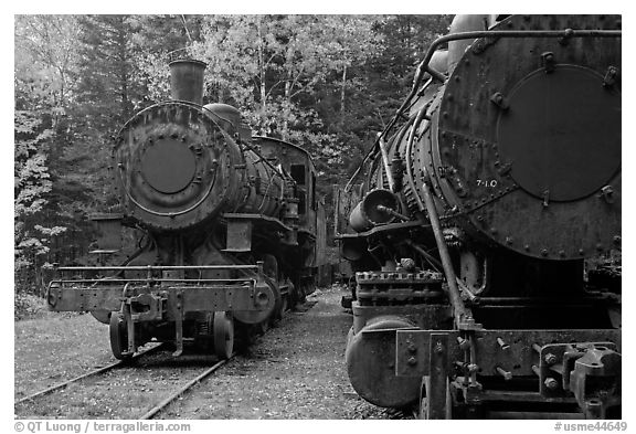 Eagle Lake and West Branch railroad locomotives. Allagash Wilderness Waterway, Maine, USA (black and white)