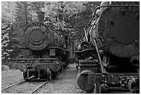 Eagle Lake and West Branch railroad locomotives. Allagash Wilderness Waterway, Maine, USA ( black and white)