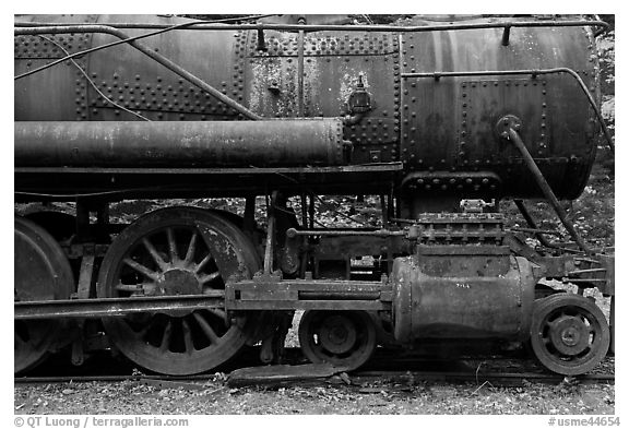 Rusting steamer in the woods. Allagash Wilderness Waterway, Maine, USA (black and white)